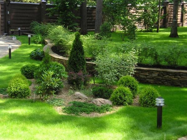 Картинки по запросу создание композиций из садовых растений