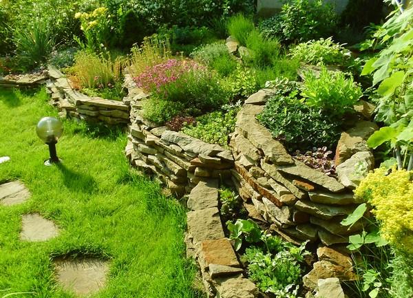 декоративные кустарники в ландшафтном дизайне