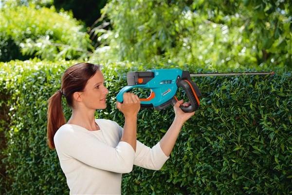 Садовая техника для ухода за кустами и деревьями