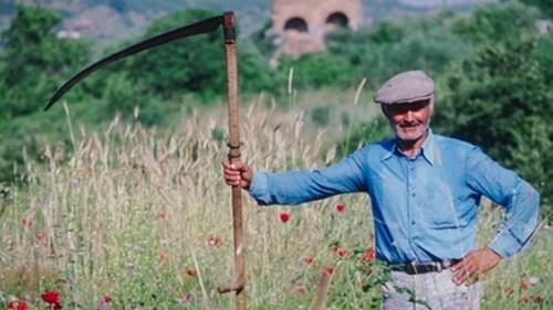 Коса для травы ручная
