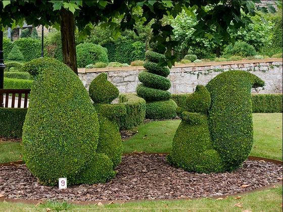 Фигуры топиари из вечнозеленых растений