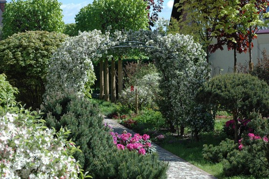 Арка для сада из вьющихся растений