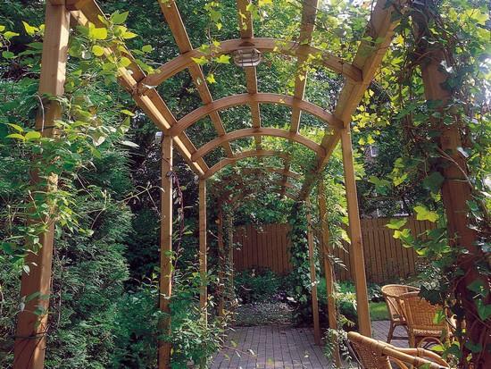 арки и перголы садовые