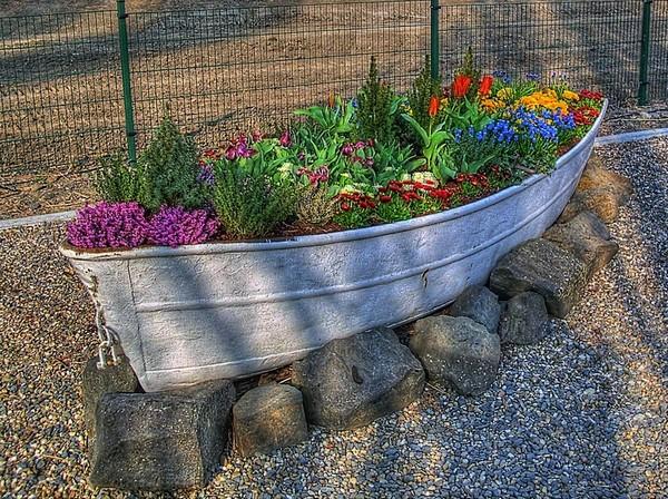 Цветы посаженные в лодке фото