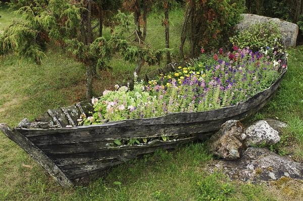 Старая лодка для цветов фото