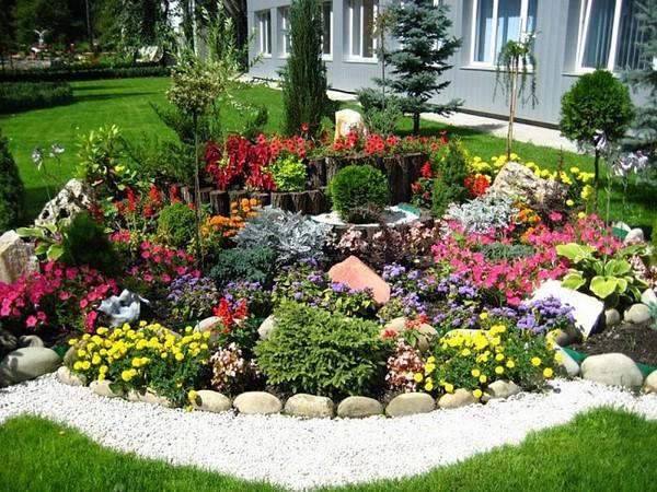 клумбы непрерывного цветения фото