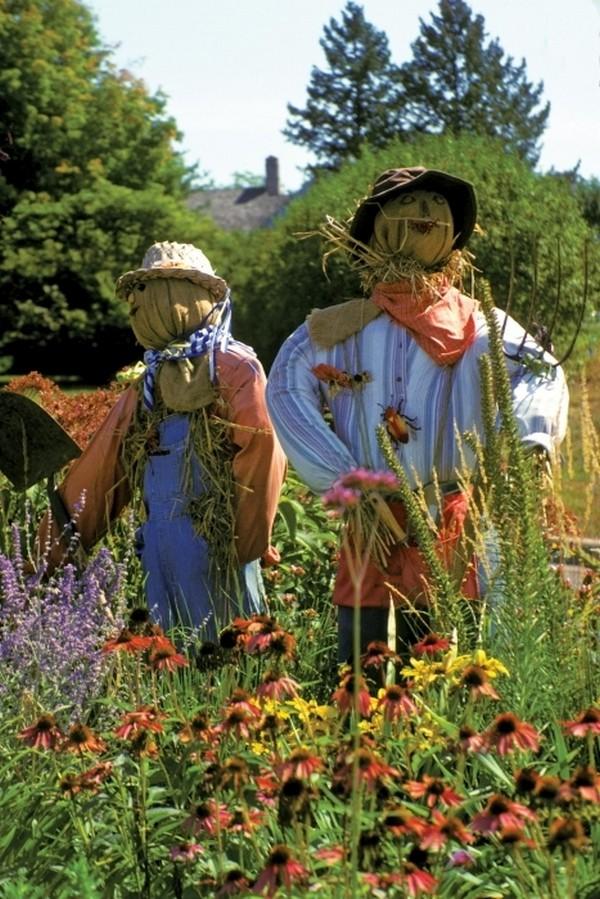 Огородные пугала на дачном участке фото