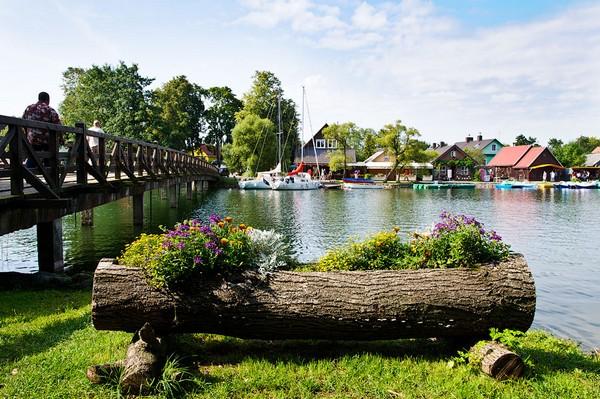 Клумба из бревна на берегу реки фото