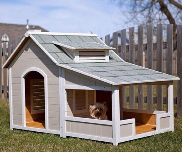Уютная будка для собаки с террасой фото