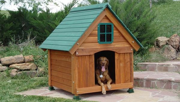 Домик-будка для собаки фото