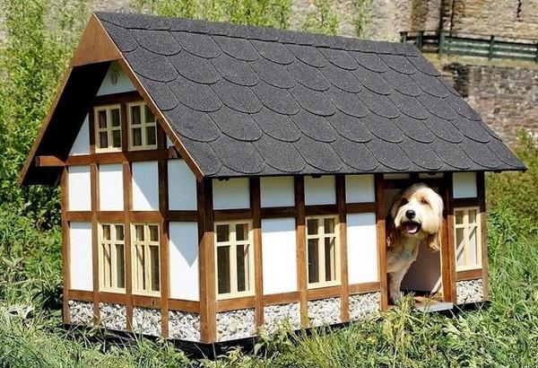 Домик для собаки фото