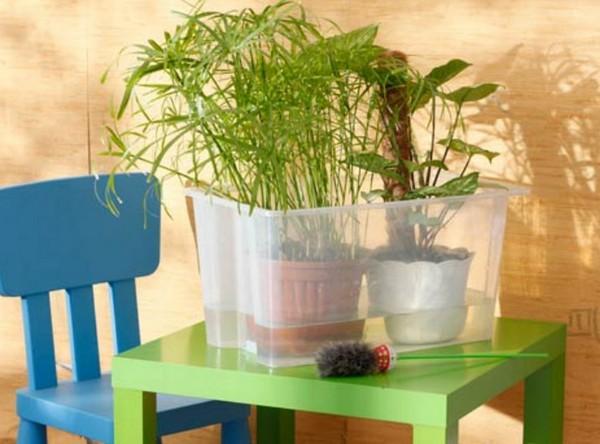 Полив домашних растений во время отпуска своими руками фото 143