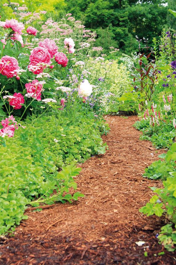 Древесная кора для облагораживания садовых дорожек
