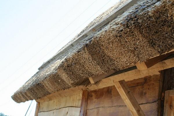 крыша из камыша технология
