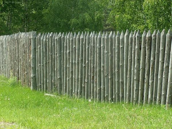 частокол забор из вертикально поставленных бревен