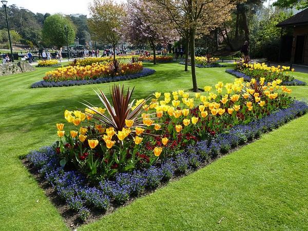 Формы из оазиса для цветов