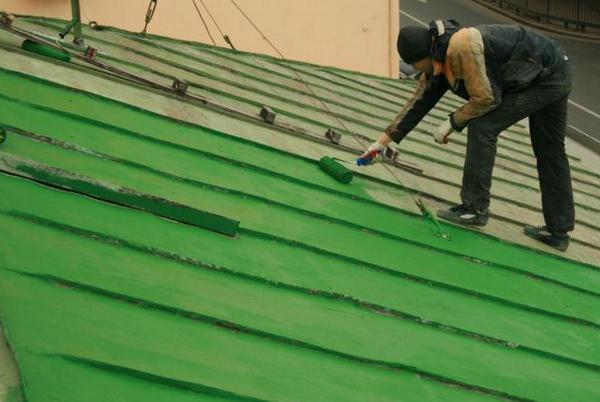 Краска для крыши резиновая фото